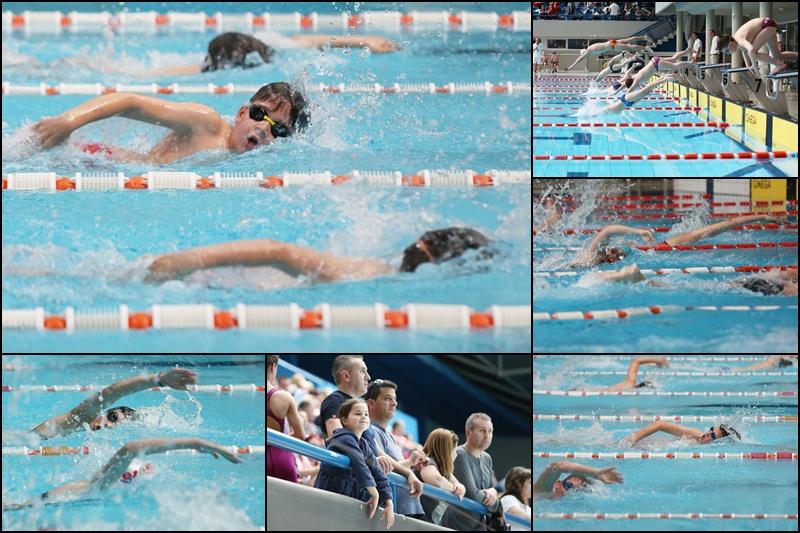 jadran-carine-plivanje-170508